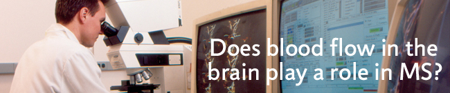 Does blood flow in the brain play a role in MS?