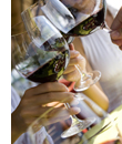 Study suggests link between alcohol and reduced MS risk